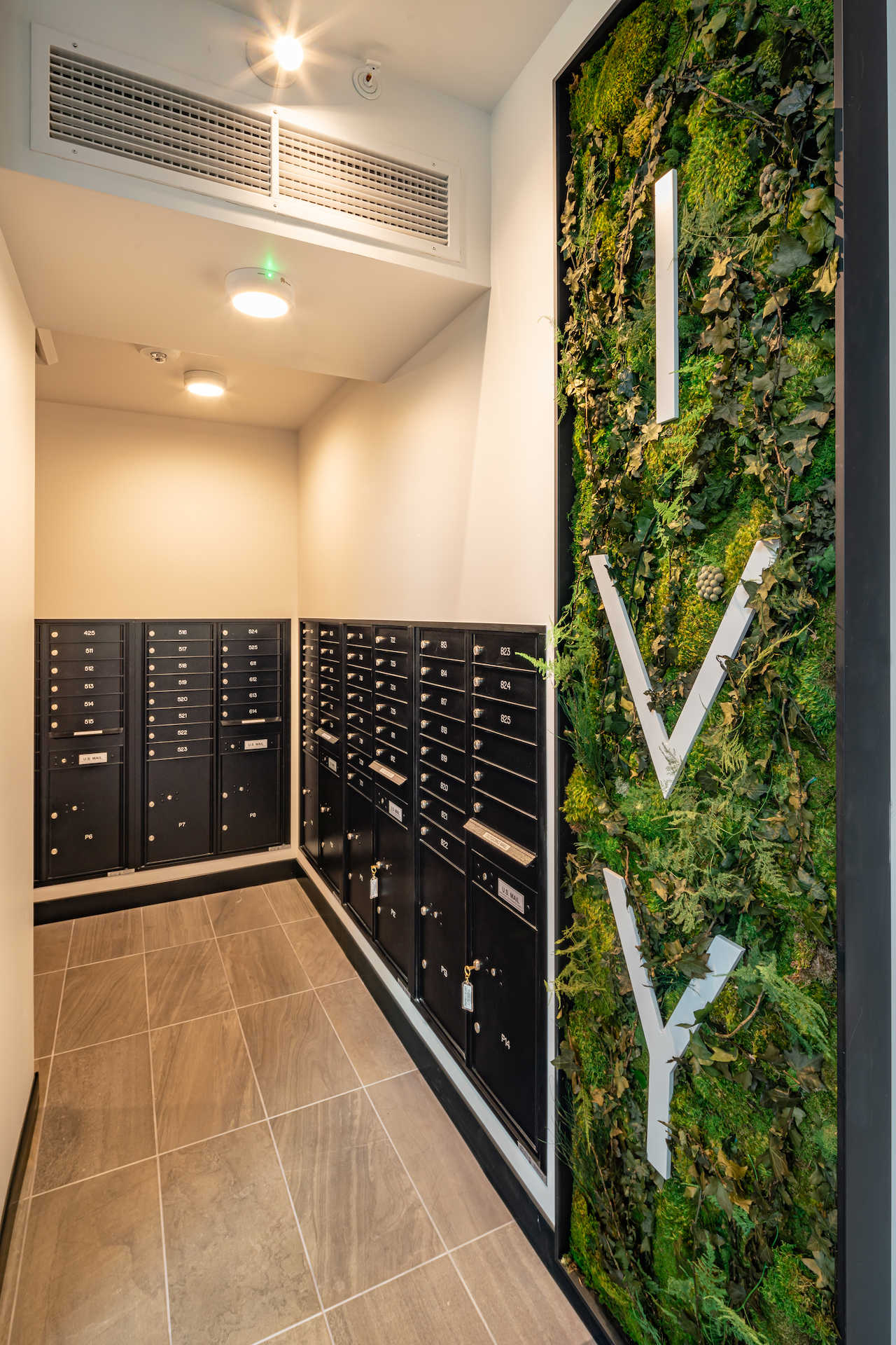 Ivy-Builtworkphotography-012321--5