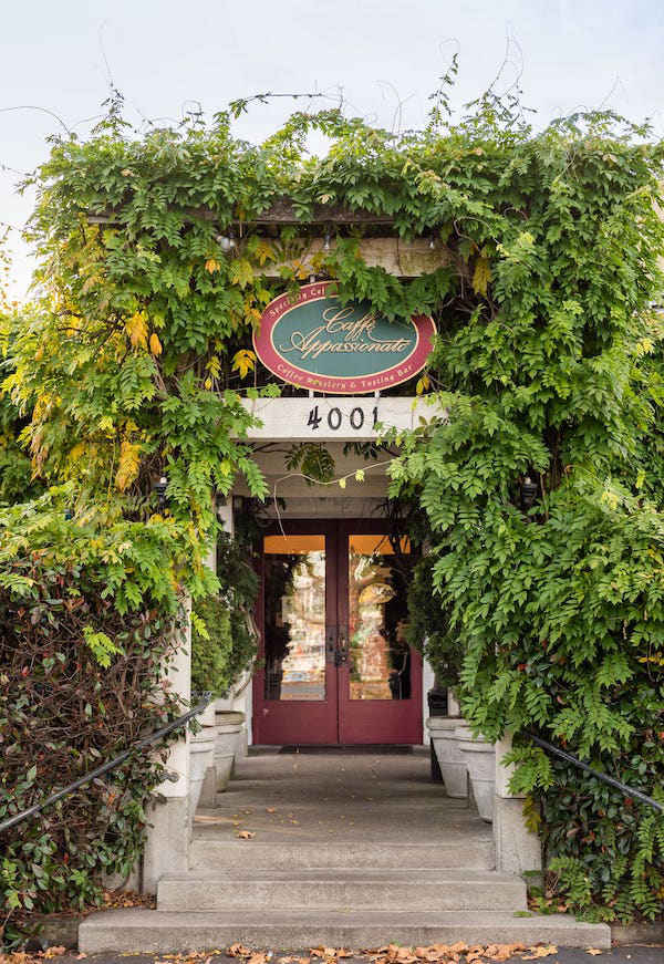 Ivy-Neighborhood-Gallery-15