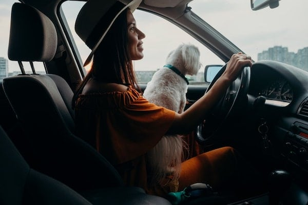 Side view portrait of a woman wearing a hat and orange dress driving a car with a dog in her lap.